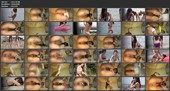 [E72-06] 海の家SUPERアングル便所隠撮 2 2013/08/11 エボ・ビジュアル トイレ 脱糞